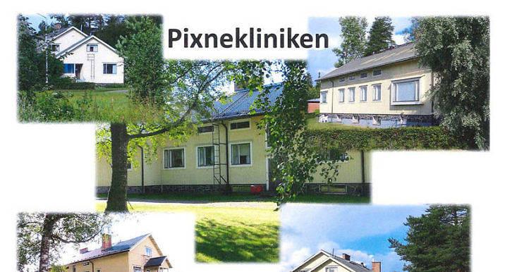 Pixnekliniken erbjuder Finlands enda missbrukarvård på svenska.