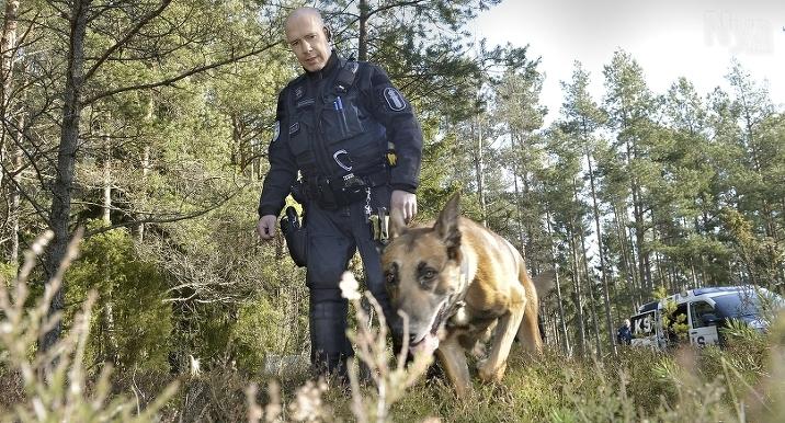 BRA NOS Scooby Doo med Magnus Gustafsson, här på övning, är ett rutinerat par som blivit finska mästare i narkotikasök tidigare.
