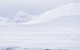 SNART ISFRITT Arktis kan bli isfritt på sommaren redan år 2040. Tidigare uppskattade forskare att det inträffa år 2070 vilket tyder på att utvecklingen går snabbare än man tidigare trott.